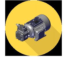 Gruppo motore pompa Berarma